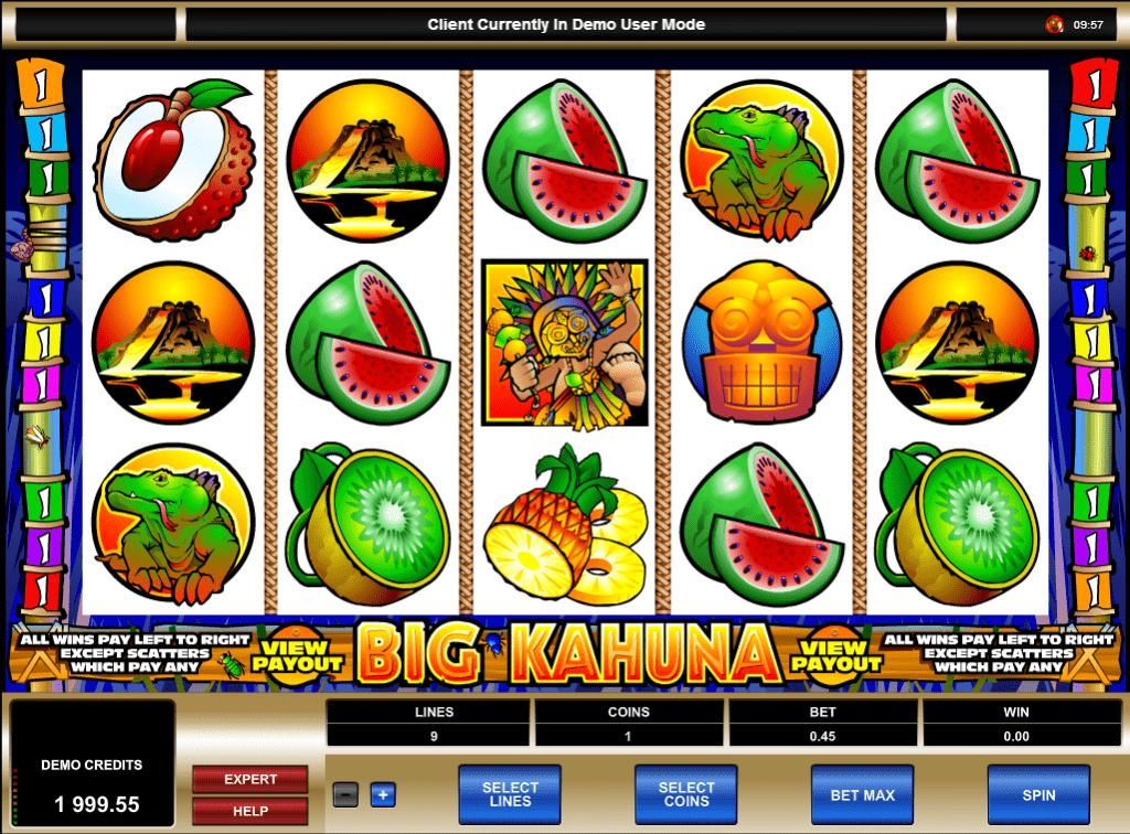 Big Kahuna Slot Machine - How to Play