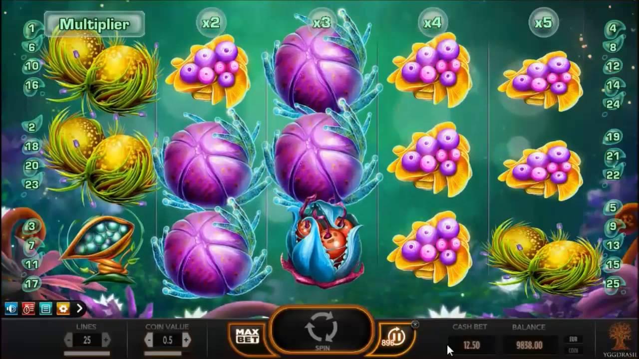 Fruitoids Slot Machine - How to Play