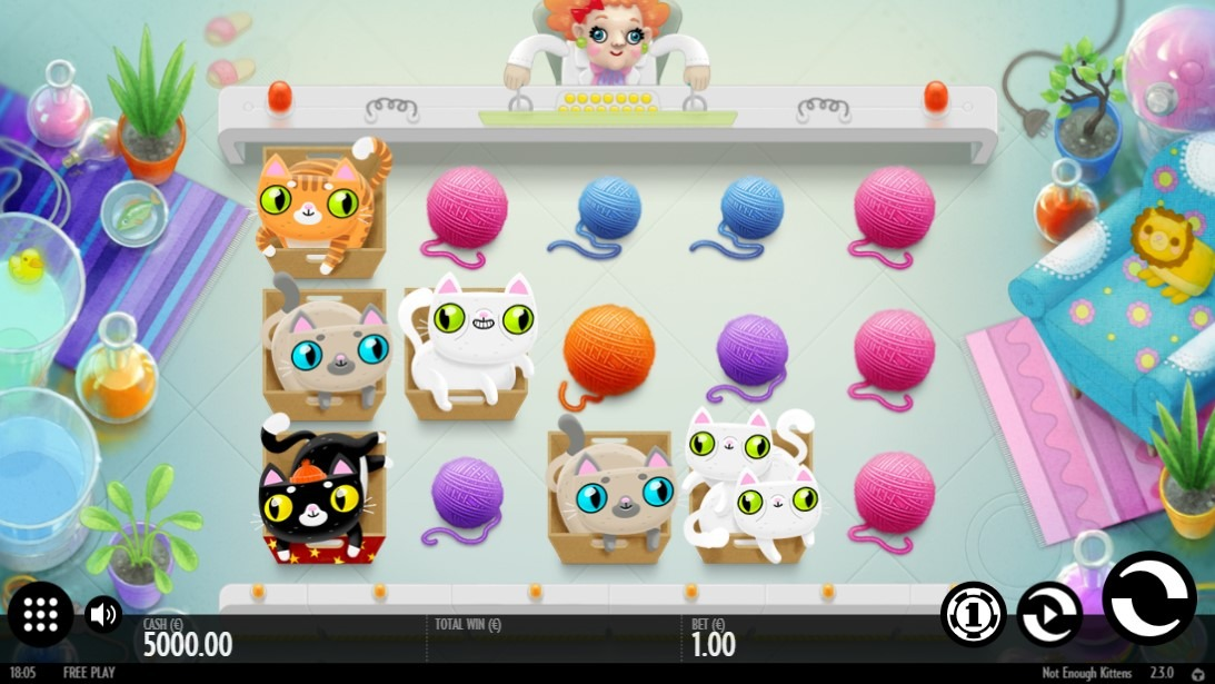 Not Enough Kittens Slot Game Symbols and Winning Combinations