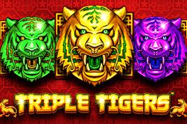 Triple Tigers Slot Review